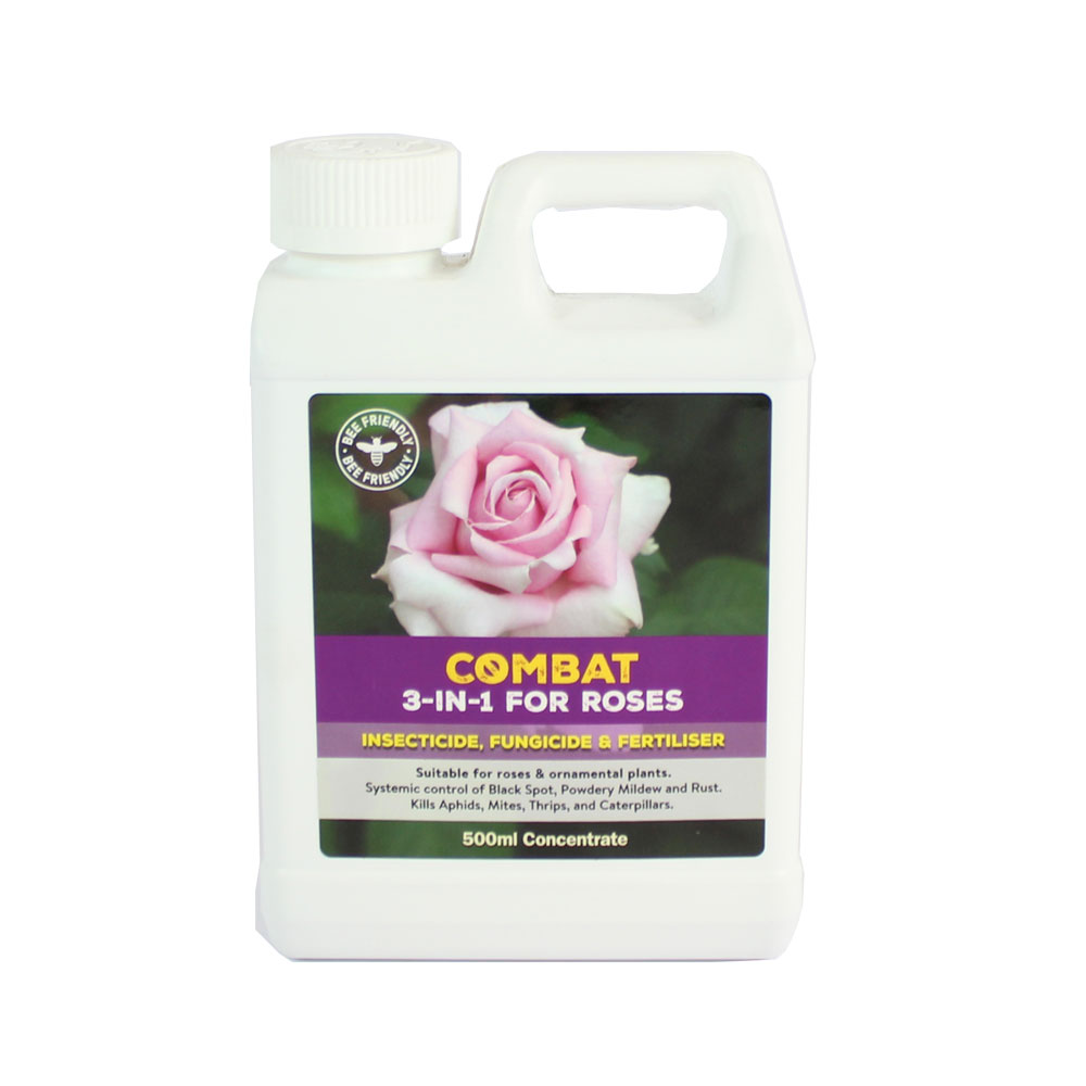 How to get rid of Rose Black Spot | Kings Plant Doctor